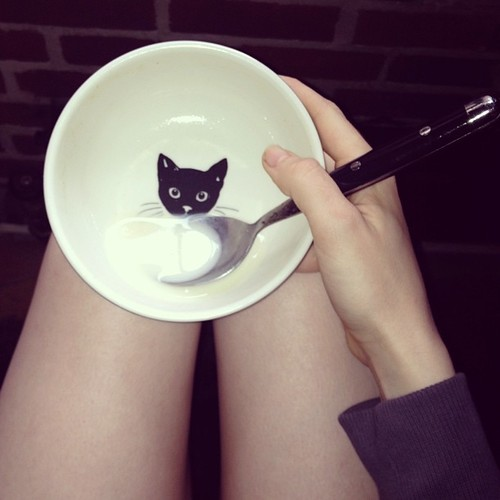 Here's model Ali Michael's legs plus a kitty cat bowl. Why? Because we can. Image via modelspersonal.