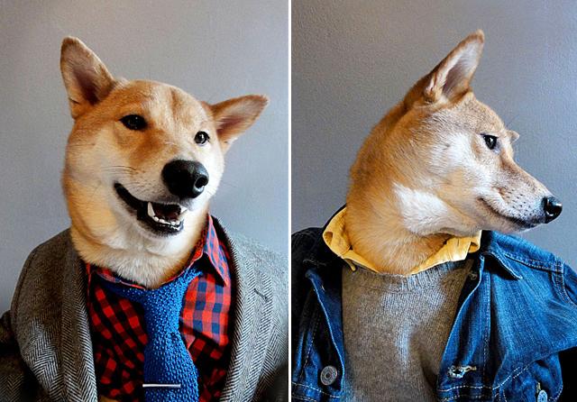 I think I'm in love. Image via Menswear Dog